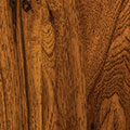 Hickory: Golden Pecan (FC 41610)