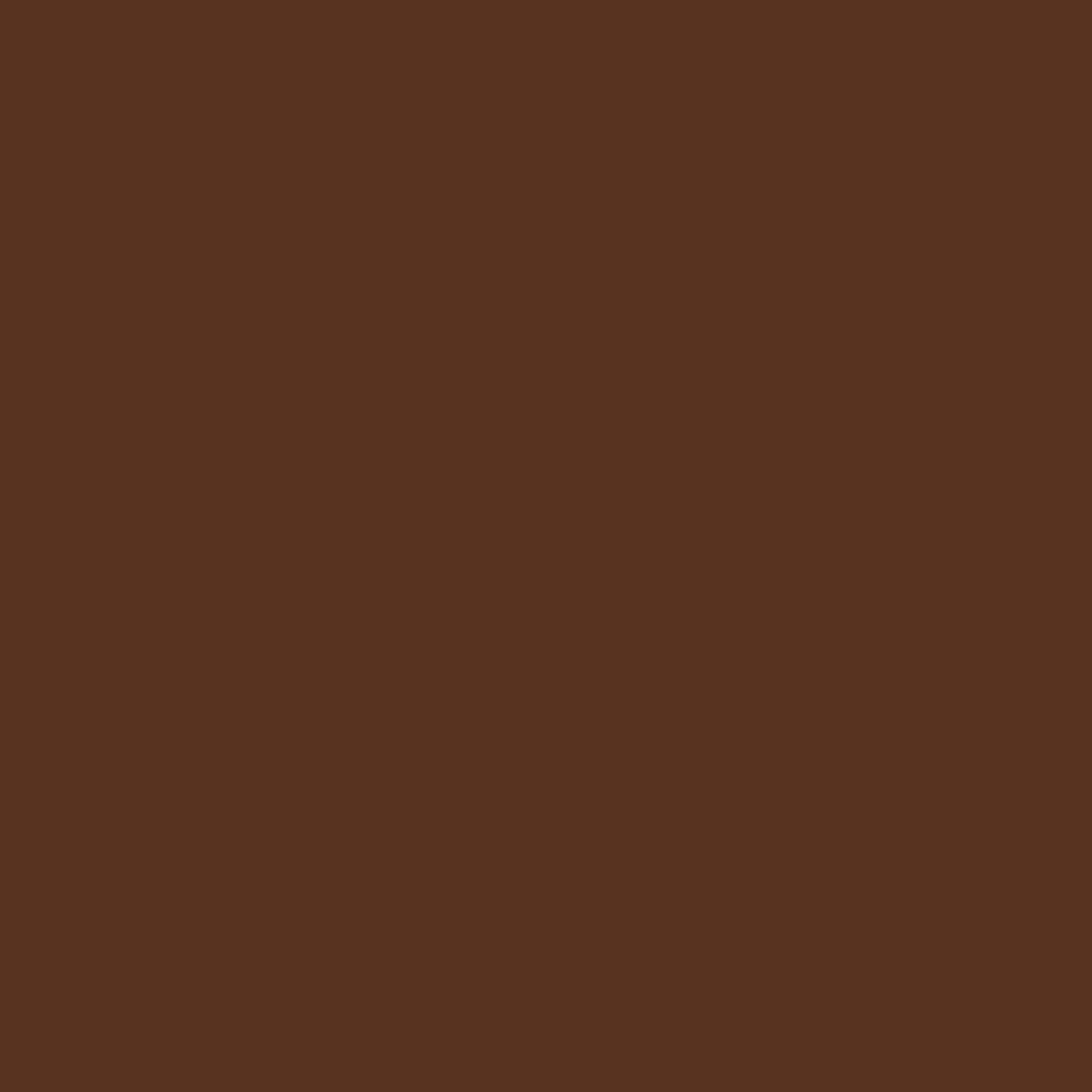 Colors: CBR Chestnut Brown