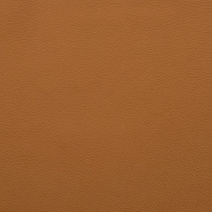 Leathers: Camel