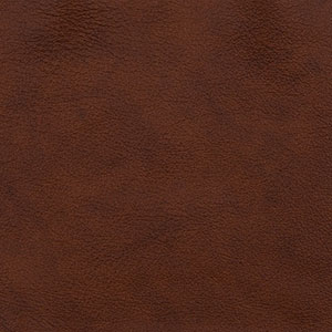 Leathers: Dark Oak